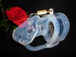 Birdlocked Classic: clear silicone Chastity Cage